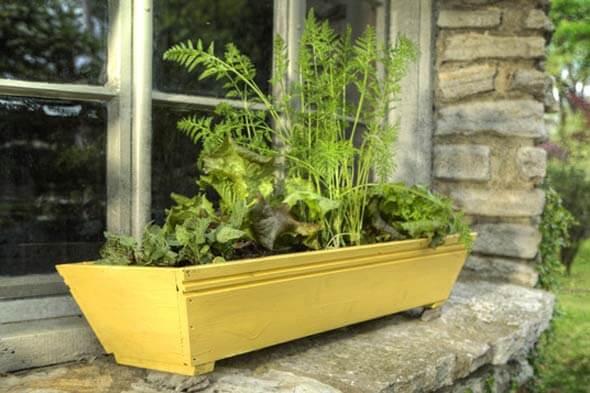Faire pousser un potager dans un pot pour fenètre ou balcon