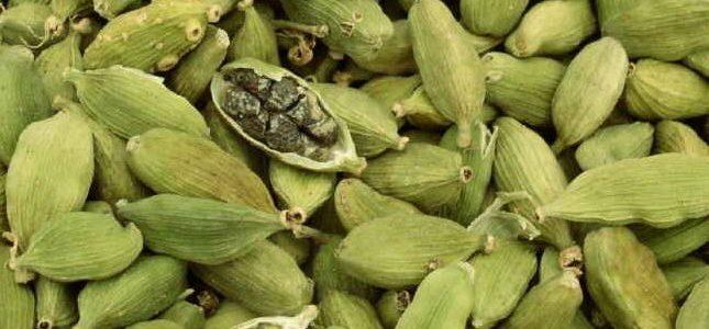 Comment faire pousser de la cardamome à partir de graines