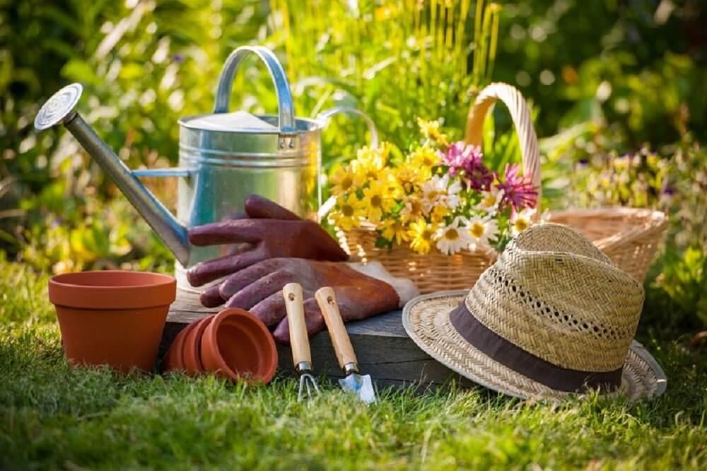 outil jardinage debutant