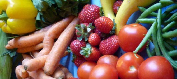 5 légumes à planter en juin